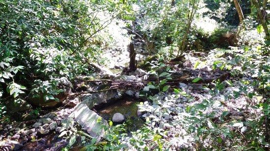 San Ramon, Nicaragua: stream