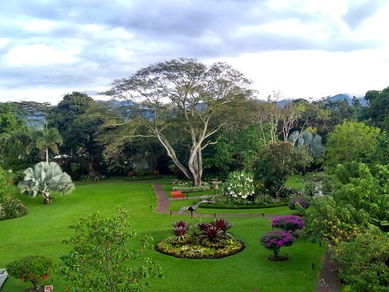 Santo Domingo de Heredia, Costa Rica: IMG_20171122_061555838_HDR_large.jpg