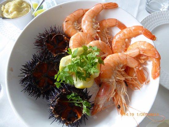 Chez Fonfon: oursins et crevettes