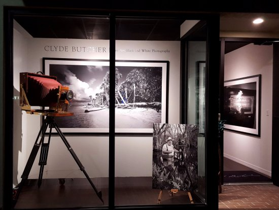 Clyde Butchers St Armands Gallery Window Display Of Clydes MAMMOTH 12x20 Large Format