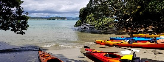 Cathedral Cove Kayak Tours: 20171121_120904_large.jpg