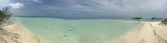 Bodufinolhu Island: IMG-20171128-WA0166_large.jpg