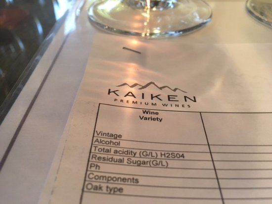 Bodega Kaiken: tasting came with notes which was very nice to better understand each wine