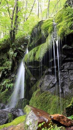 Tsumagoi-mura, Japan: たまだれの滝