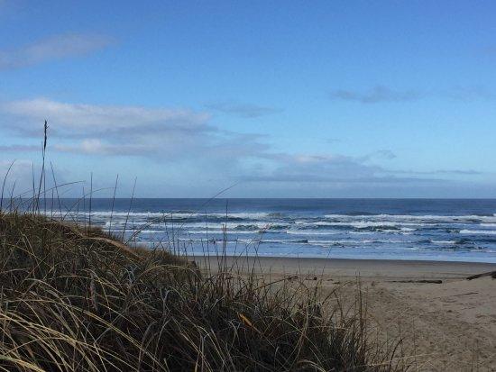 South Jetty County Park: Long beach line