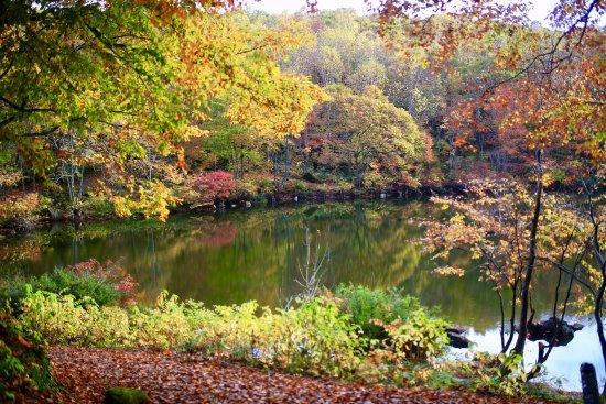 Sennin Pond