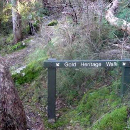 Warrandyte, Australia: Whipstick Gully