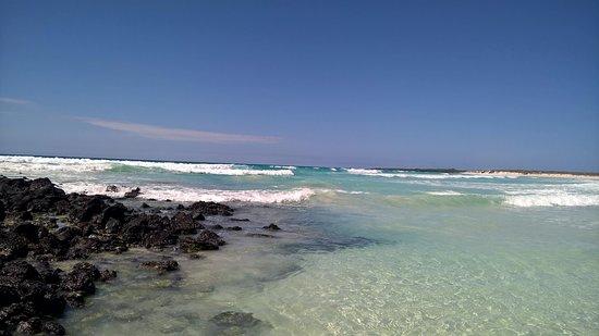 Playa Mansa Picture Of Galapagos Beach At Tortuga Bay