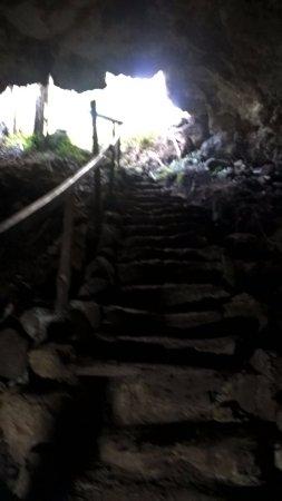 Reserva El Chato: tunel 1