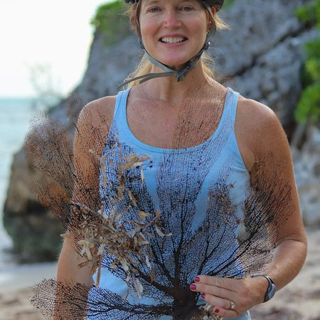 Lovely Sea Fan along the sea shore in East End on the Cayman Coastal Loop Tour with ECO Rides Ca