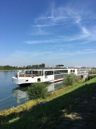 Lignan-De-Bordeaux, France: photo0.jpg