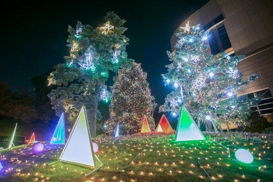 Hotel New Otani Tokyo Garden Tower: クリスマスイルミネーション