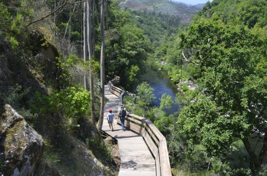 Paiva Walkways en Alvarenga ...