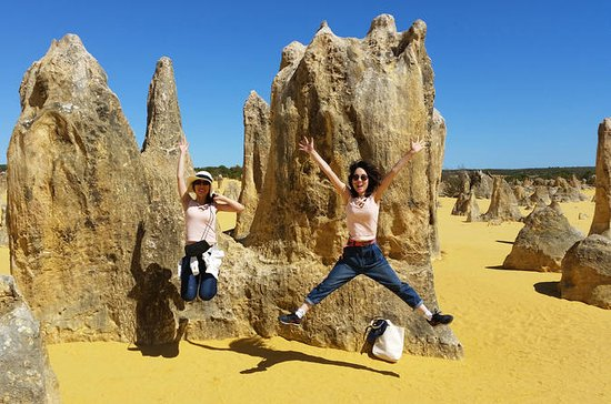 Full-Day Tour to Pinnacles Desert and ...