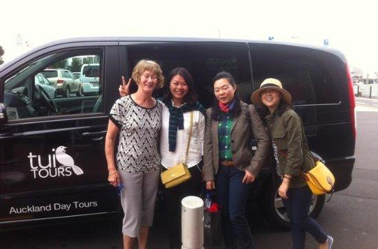 Half Day Auckland and Devonport Tour
