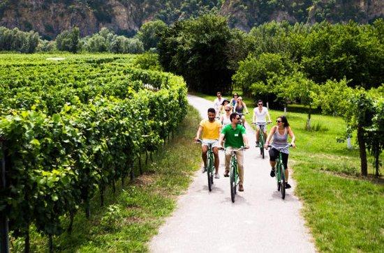 Kleine groep Wachau Valley Winery ...