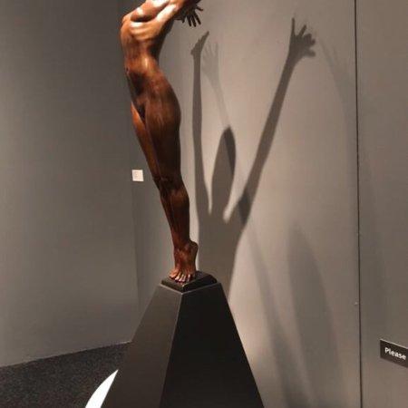 Bellevue Arts Museum (BAM) : photo4.jpg
