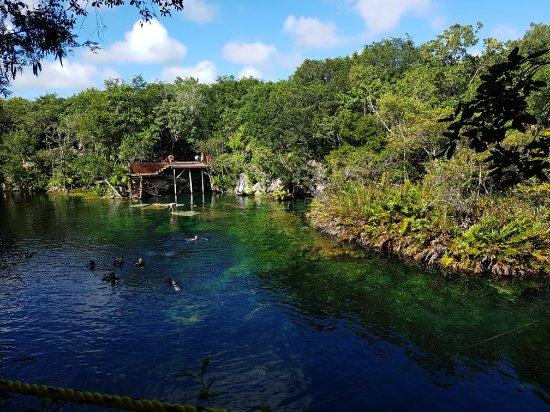 Cenote Jardin del Eden: 20171130_105103_large.jpg
