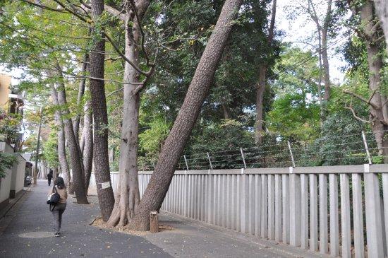 Okusawa Castle Ruins