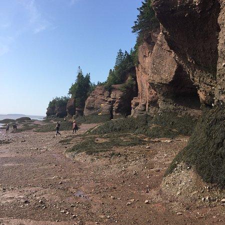 Hopewell Cape, Kanada: photo1.jpg