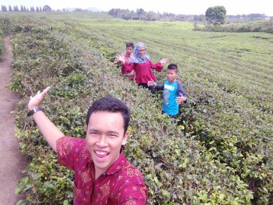 Pematang Siantar, Indonesia: kebun teh bersama keluarga