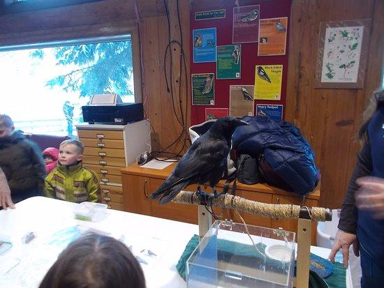Eagle River Nature Center Hours