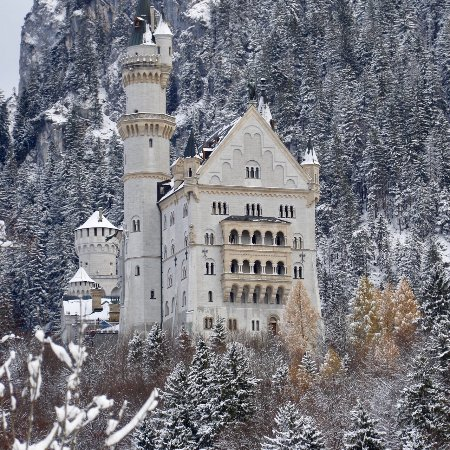 Bus Bavaria Neuschwanstein Castle Tours Photo From The Foot Hill