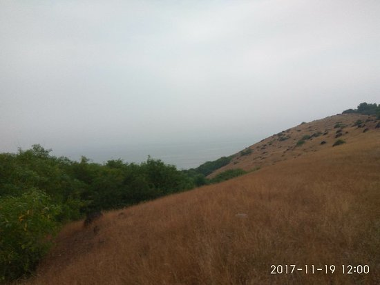 Chapora fort and the adjoining hill
