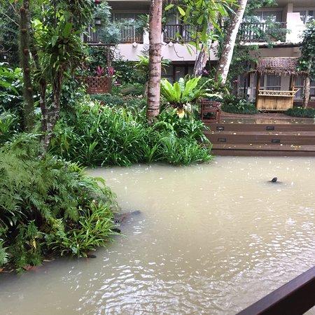 Pakasai Resort : photo0.jpg