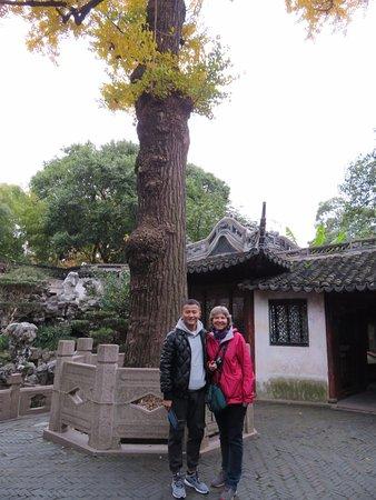 Mini Group Shanghai Day Tour to Zhujiajiao Water Town, Yu Garden, Bazaar, Bund: With Ocean at the Yu garden