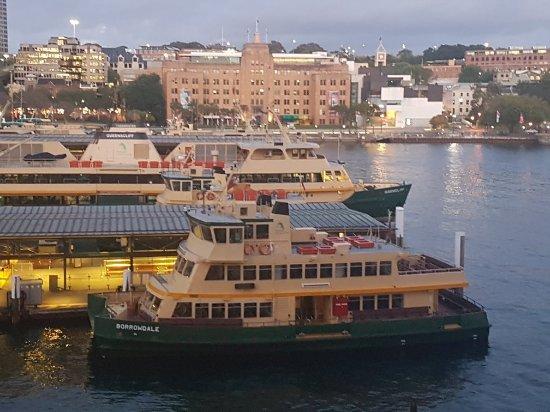 Pullman Quay Grand Sydney Harbour: 20171112_052703_large.jpg