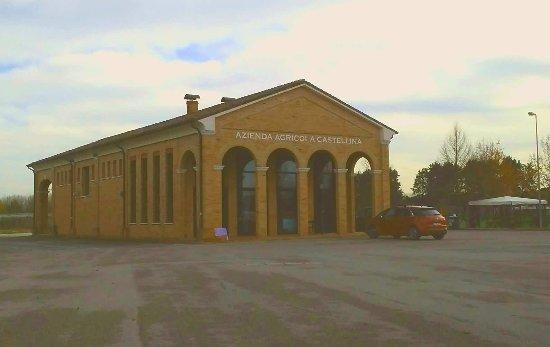 Azienda Agricola La Castellina