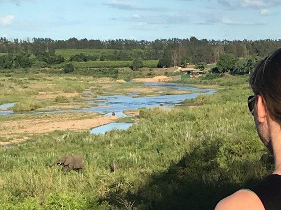 Buckler's Africa: IMG-20171126-WA0008_large.jpg