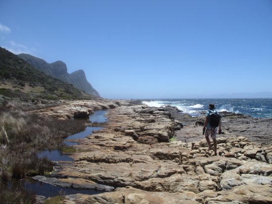 Cape Town, South Africa: Our intrepid guide leads the way