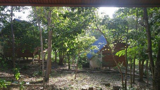 Esmeralda View Resort: IMG-20171202-WA0000_large.jpg