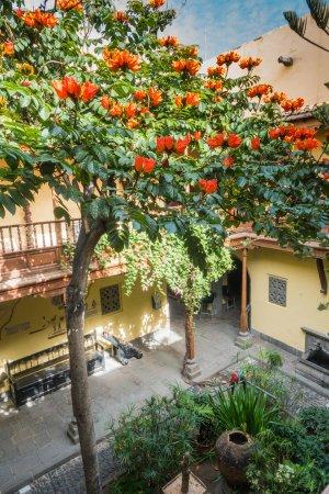 Il giardino interno bild von casa de colon las palmas - Giardino interno casa ...