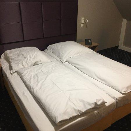 Hotel Cult: photo1.jpg