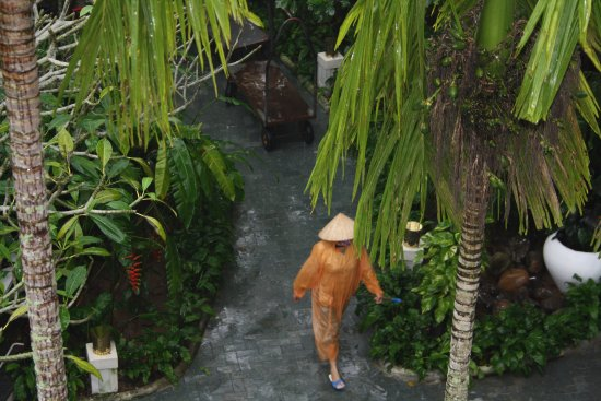 Hoi An Ancient House Resort & Spa: The grounds on a rainy day