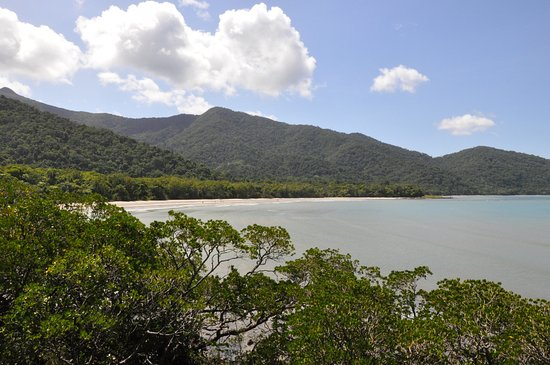 View of Cape Tribulation beach