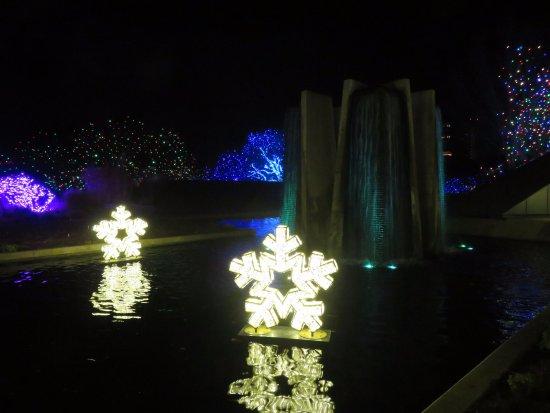 Blossoms Of Light Picture Of Denver Botanic Gardens Denver Tripadvisor