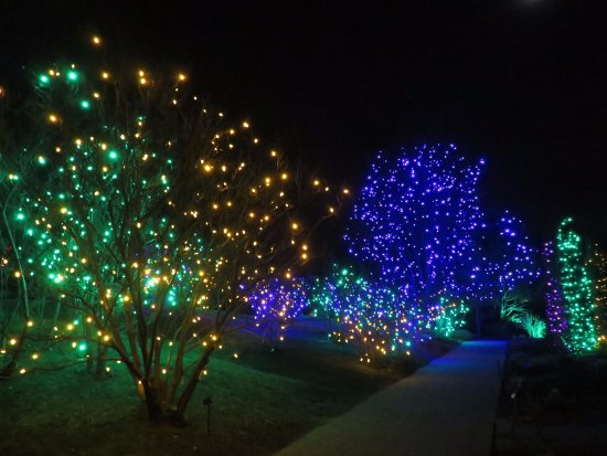 Blossoms Of Light Kuva Denver Botanic Gardens Denver