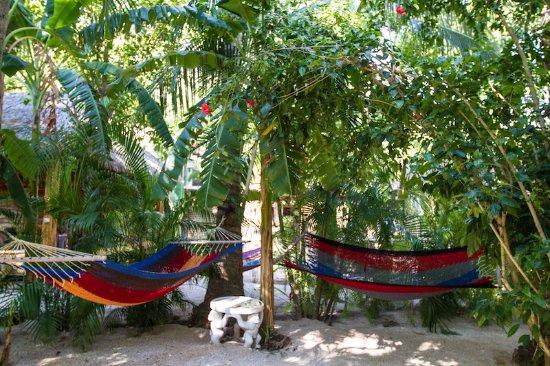 Плайя-Гранде, Коста-Рика: Hammocks