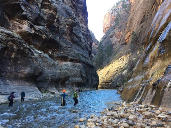 Springdale, UT : Having a hiking stick was extremely helpful when crossing this river stream