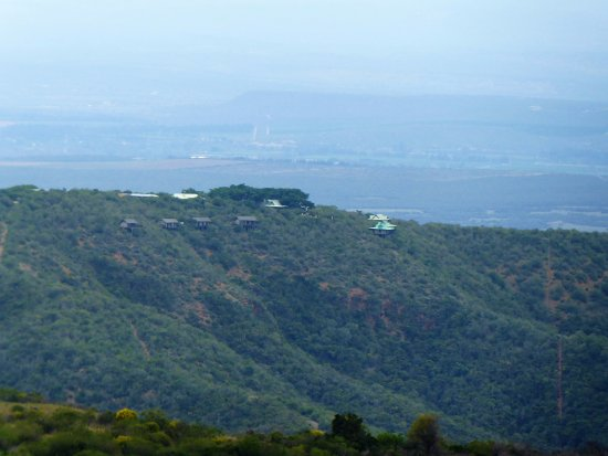 Addo, Sudáfrica: view of Camp fig tree from the other side of the mountain, our tent was second from the left!