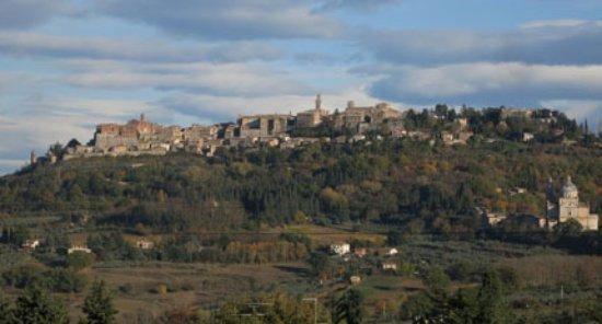 Serre di Rapolano, Italia: Montepulciano