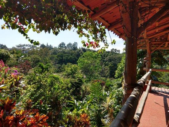 Atenas, Costa Rica: Vue sur le jardin de depuis la terrasse