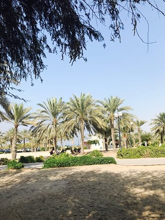 Al mamzar beach park chalets booking