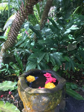 The Hidden Spirit Cafe & Grill: Tropical flowers