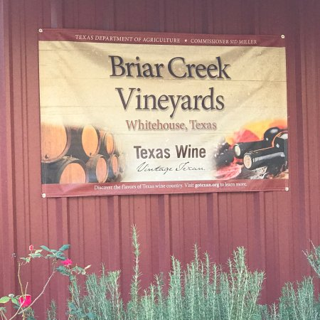 Brair Creek Vineyards