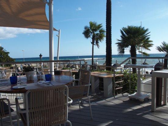 Sea grill marbella restaurant reviews phone number - Sea grill marbella ...